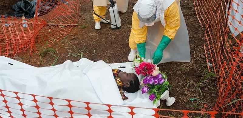 Victime d'Ebola? ou bien de l'inaction des africains? Crédit photo: e-healthmag.com