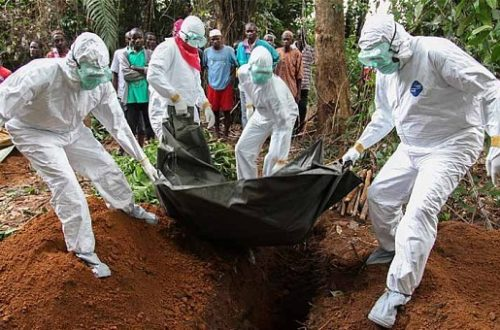 Article : Ebola : missile à tête chercheuse ?