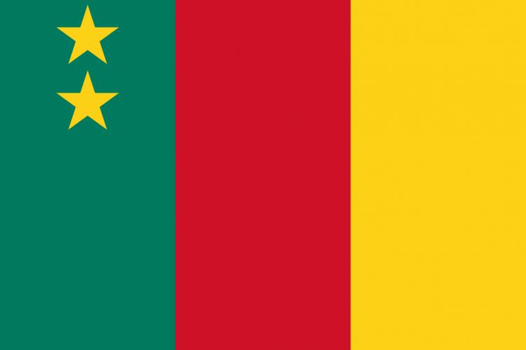 Drapeau du Cameroun fédéral - Crédit photo: drapeau-monde.com