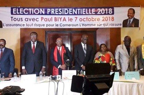 Article : L'« opposition » camerounaise forme enfin une coalition